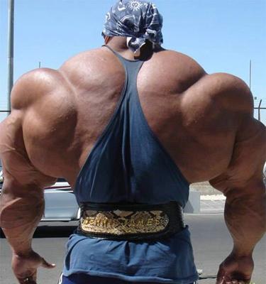 bodybuilder funny
